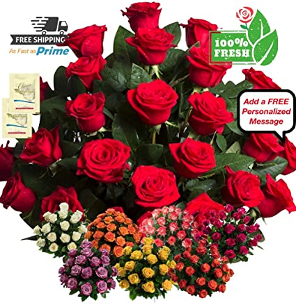 227 & LUXURY 100% Fresh Flowers for Delivery with AMAZING Fragrance 25 Red Roses with HUGE Buds\