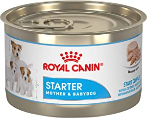 Royal Canin Size Health Nutrition Starter Mother and Babydog Mousse in Sauce Canned Dog Food, 5.8 oz Can (Pack of 24)