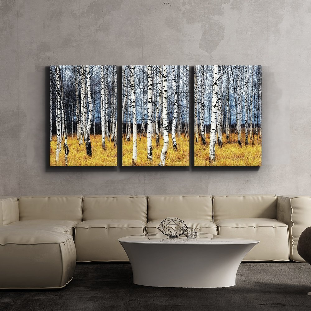 amazon com 3 piece canvas print contemporary art modern wall amazon com 3 piece canvas print contemporary art modern wall decor beautiful aspen trees fall colors giclee artwork gallery wrapped wood stretcher