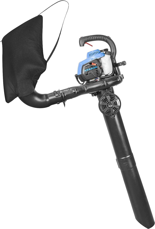 Aspirador de gasolina Gbls 7500-26.1: Amazon.es: Bricolaje y herramientas
