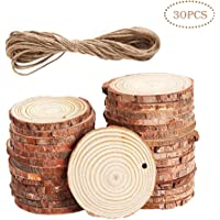 Taotao 30-Pieces Natural Wood Slices with Holes Craft Wood & Jute Twine
