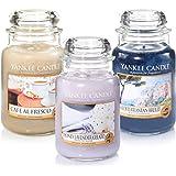 Rare officiel Yankee Candle Mediterranean Dreams Lot de 3Classic Signature grands pots–Mediterranean Breeze, miel Lavande Gelato, Cafe AL Fresco