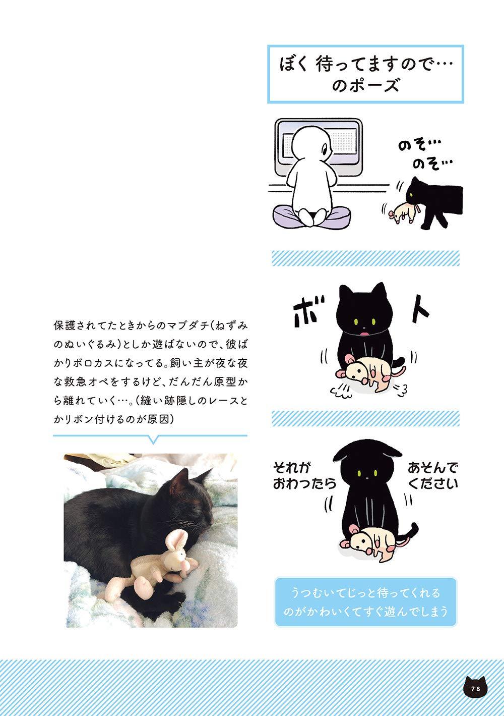 おすすめ 漫画 猫 黒