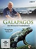 Galapagos – mit David Attenborough [2 DVDs]
