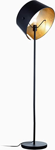 Ambiore Floor Lamp