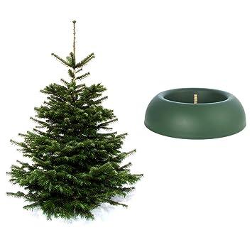 Wann Weihnachtsbaum Aufstellen.Weihnachtsbaum Inkl Baumständer Nordmanntanne 170 Cm Easyfix Junior
