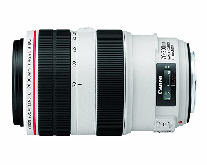The 8 best canon ef 70 300mm l is usm lens