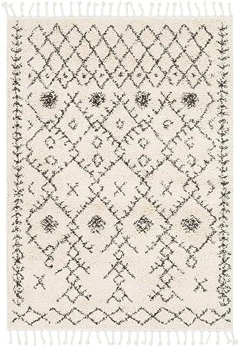 Godalming Moroccan Tassel Shag 9' x 12' Area Rug