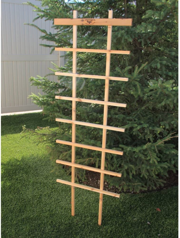 Gronomics FT 24-72 Folding Trellis, 24 by 72-Inch (Discontinued by Manufacturer)