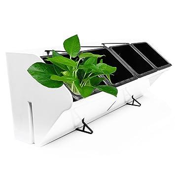 Amazon Com Koram 20 Inch Vertical Garden Wall Planter 1 Row 4 Pots