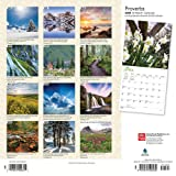 Proverbs 2020 12 x 12 Inch Monthly Square Wall