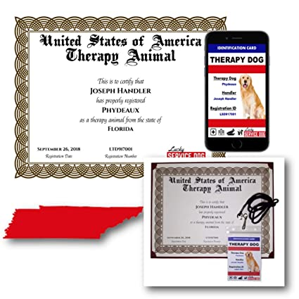.com : tennessee therapy dog certificate & po id : sports ...