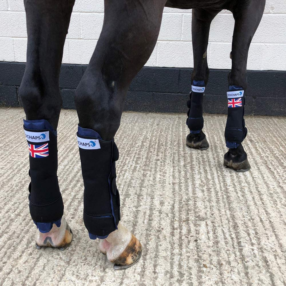 Ice Boots for Horses - CryoChaps