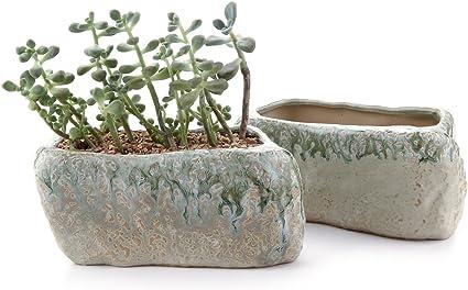 T4U Ceramic Succulent Planter Pot Set of 3 Fox Shaped Cute