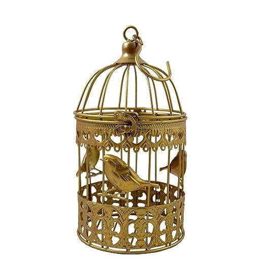 PrimoLiving Deko Metal pájaro Jaula Oro pájaro P de 856 Talla M ...