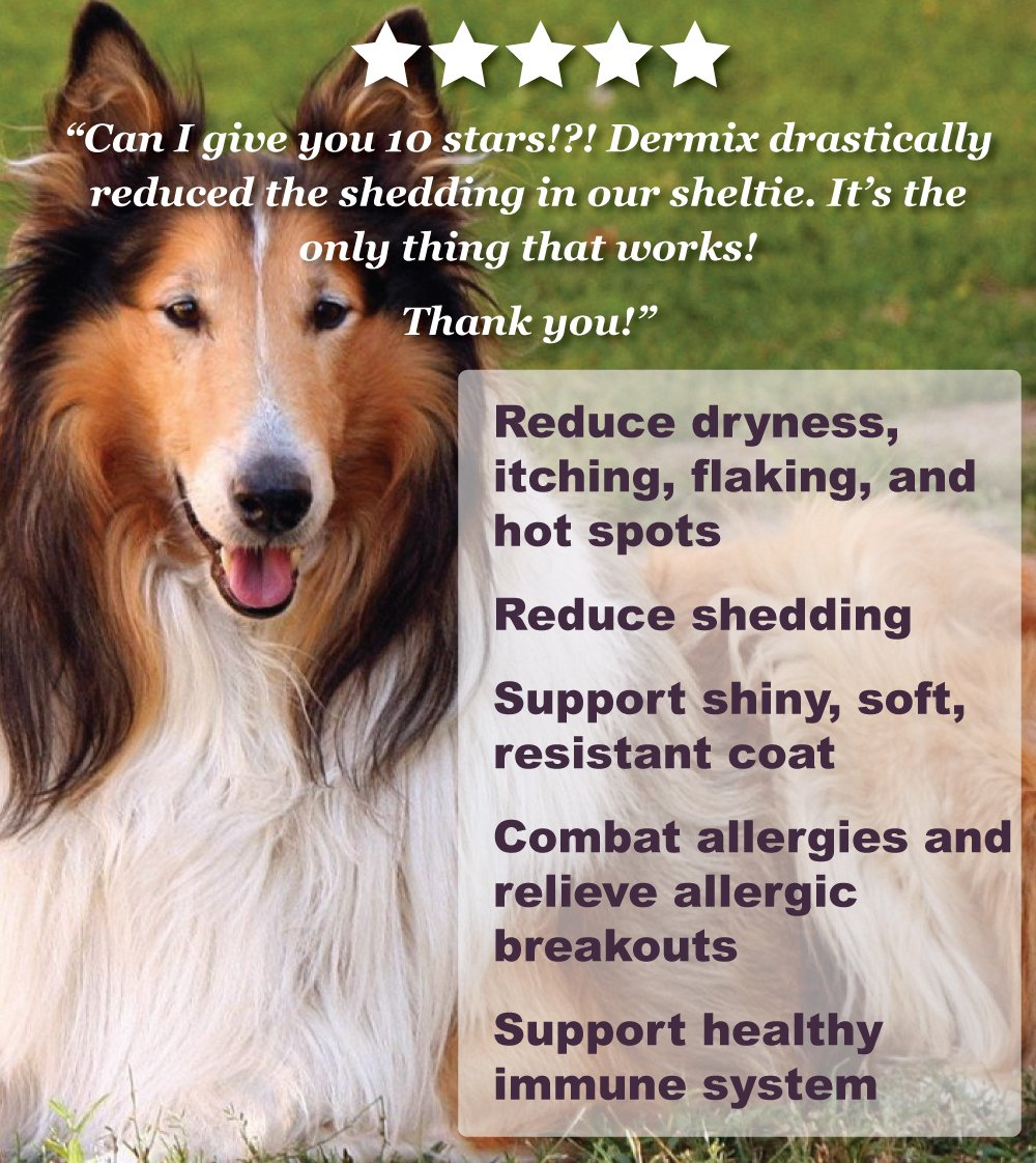 Dermix for Dogs - Skin & Coat Supplement - 32 FL OZ - Natural Formula Allergy and Alopecia Protection, Stop Skin Itching, Reduce Shedding