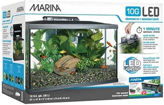 Marina Led 20-Gallon Nano Reef Aquarium