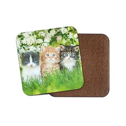 Bonito posavasos para gatitos con diseño de flores de jardín, regalo para mamá, gatos