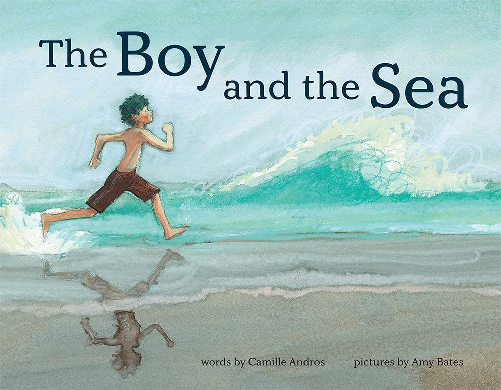 The Boy and the Sea: Andros, Camille, Bates, Amy June: 9781419749407:  Amazon.com: Books
