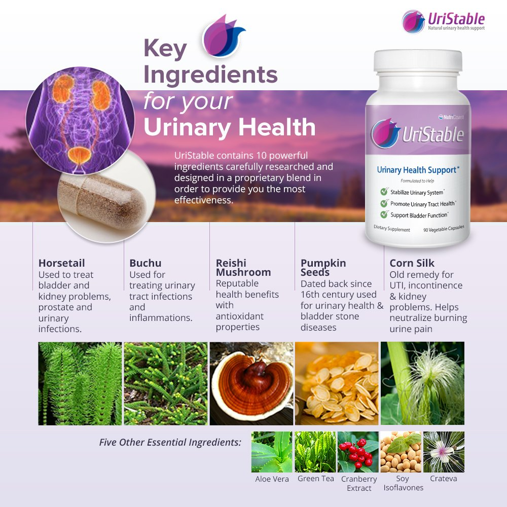 #1 Premium Natural Support For Bladder Control, Urinary Tract Infection  (UTI), Urinary Incontinence,