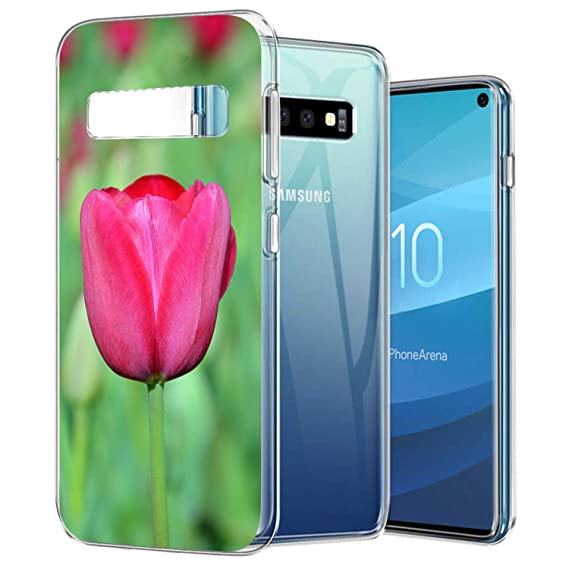 3a9d83ca29 Amazon.com: ZSTVIVA Case Compatible with Samsung Galaxy S10 Nature ...