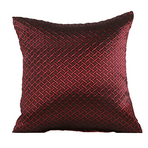 Elegant Sofa Pillows: Decorative Sofa Pillows: Amazon.com