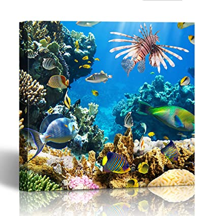 Emvency Painting Canvas Print Square 20x20 Inches Red Underwater of  Tropical Fish on Coral Reef Blue 523a4ccabe7