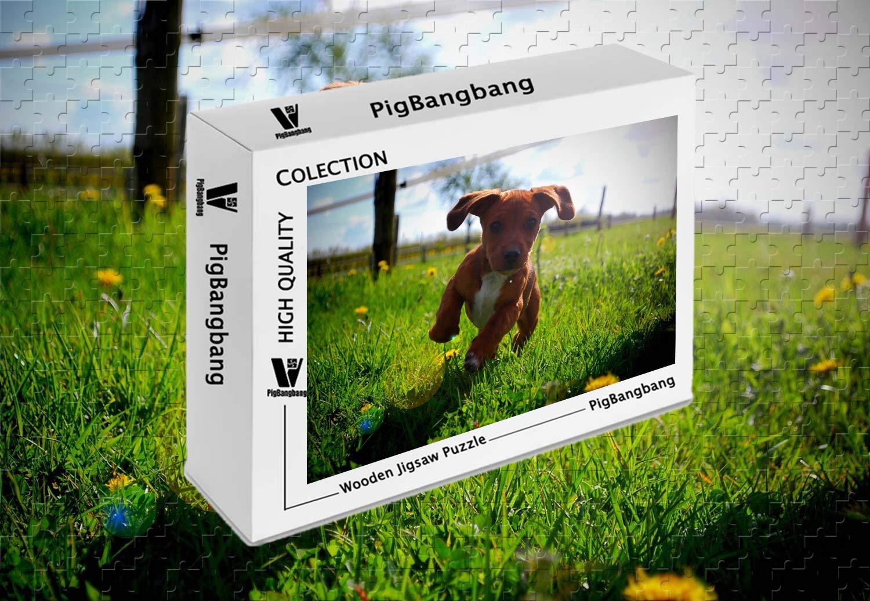 【限定価格セール!】 PigBangbang、プレミアムバスウッド ラージサイズ キュート キュート ブラウン 子犬 芝生 ランニング 15.1インチ) ラージサイズ - 300ピース ジグソーパズル (20.6 X 15.1インチ) B07HY97XVT, 鮮一:f57c67b7 --- sinefi.org.br