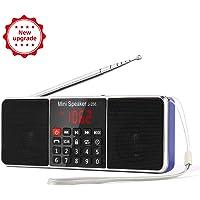 Rosa//Argento Grundig RCD 1445 USB Radio Lettore CD Mp3