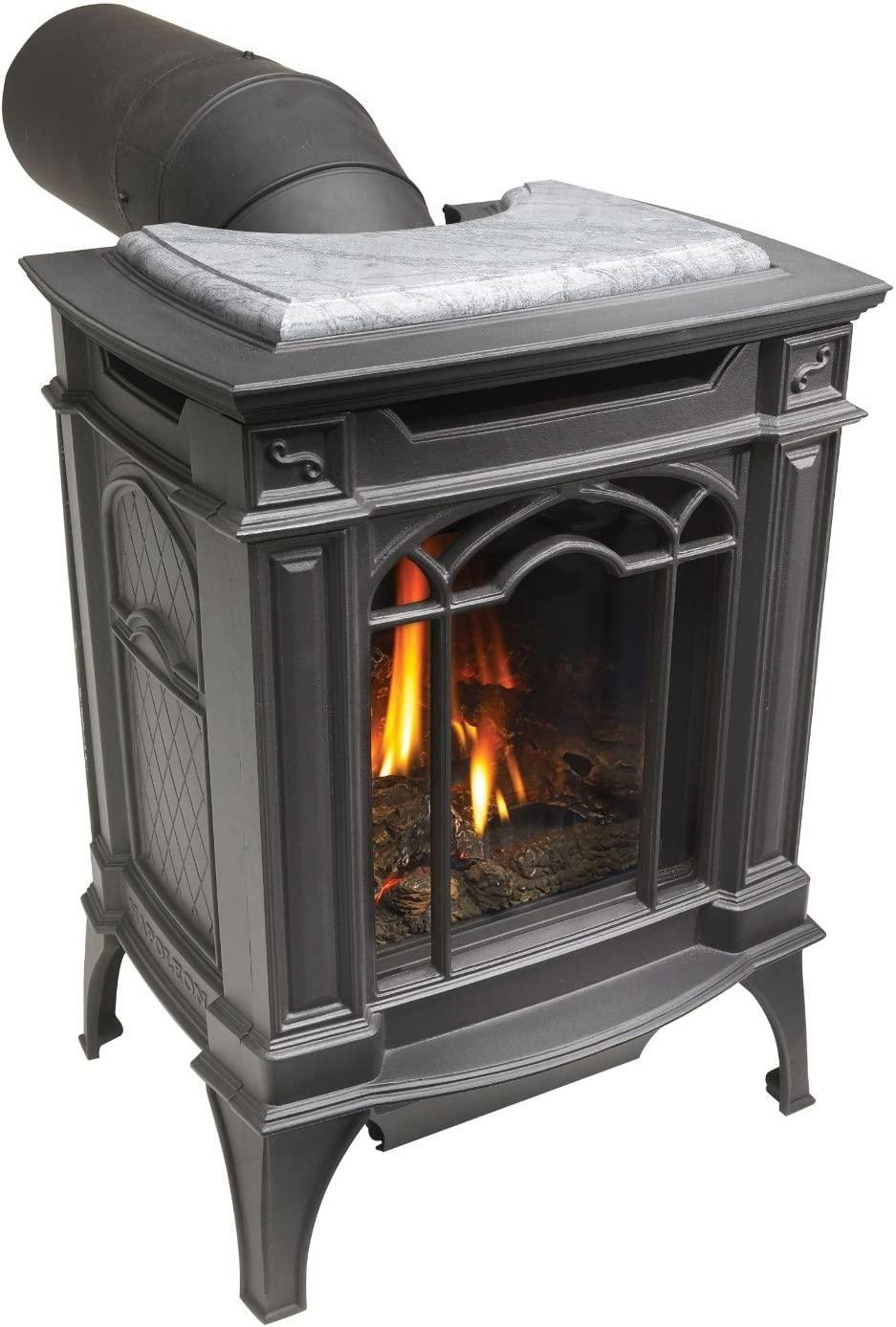 Napoleon GDS20N Direct Vent Fireplace
