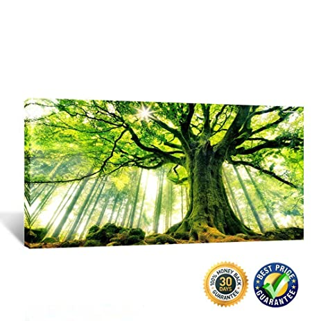 Amazon.com: Creative Art- Canvas Large Art Print Spring Forest ...