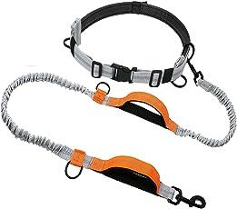 Correa para perro premium manos libres, correa tipo bungee para caminar, correr, o escalar