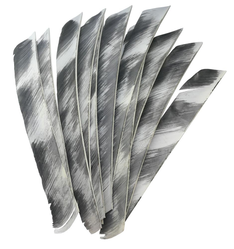 Oulay 50pcs Natural Feathers Archery Arrow Fletches Fletching WHITE full length 7-10 Right Wing