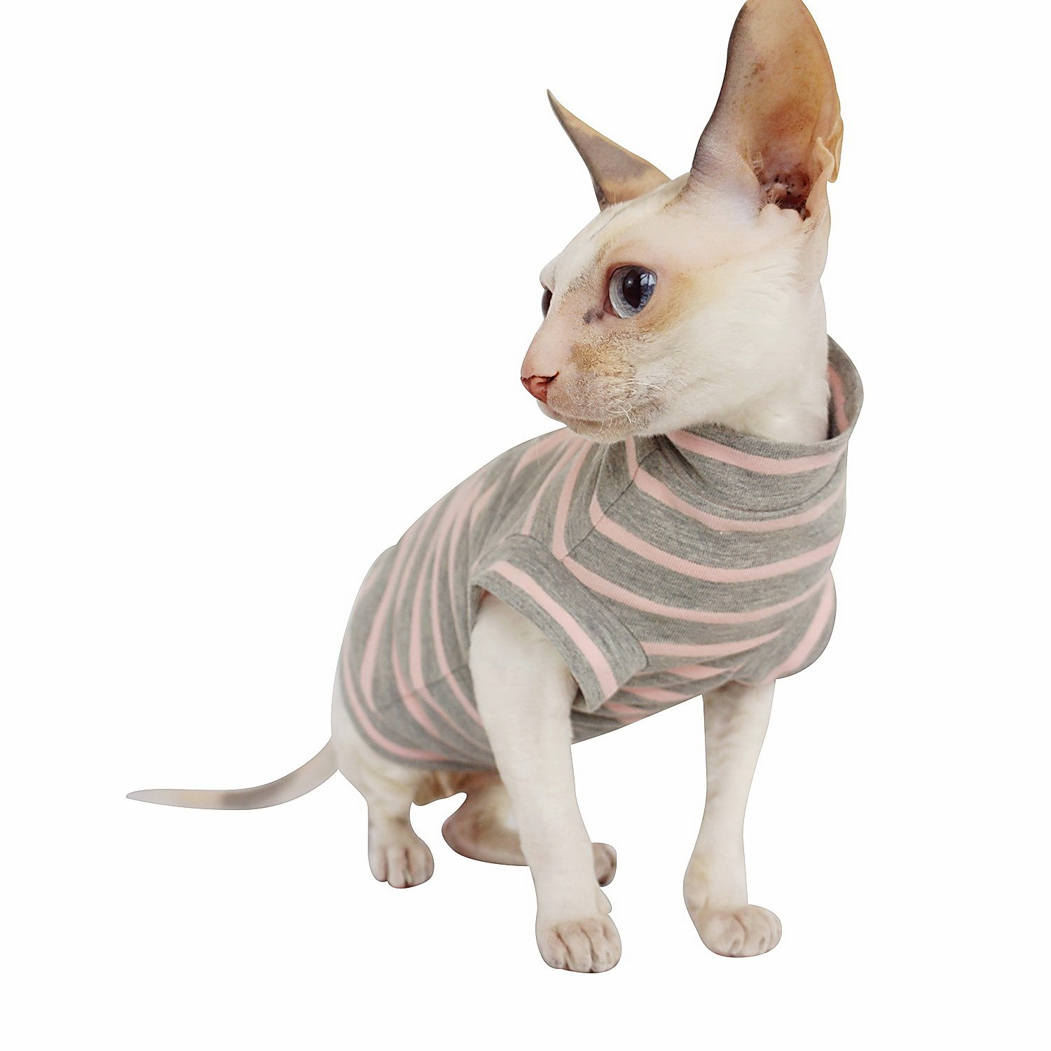 Amazon.com : Kotomoda CatS Turtleneck maxi New Pijama (XL) : Pet Supplies