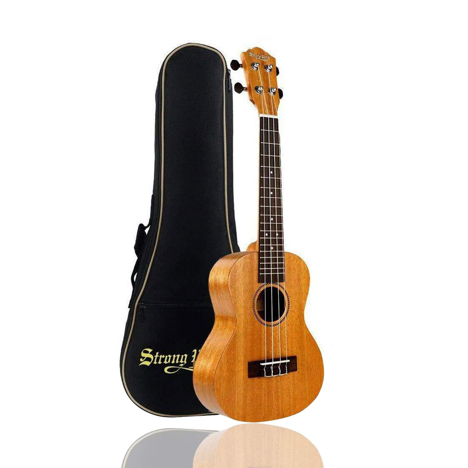ACTUTECH Professional 23 Inch Concert Ukulele Mahogany Rosewood Small Guitar for Beginner with Gig Bag