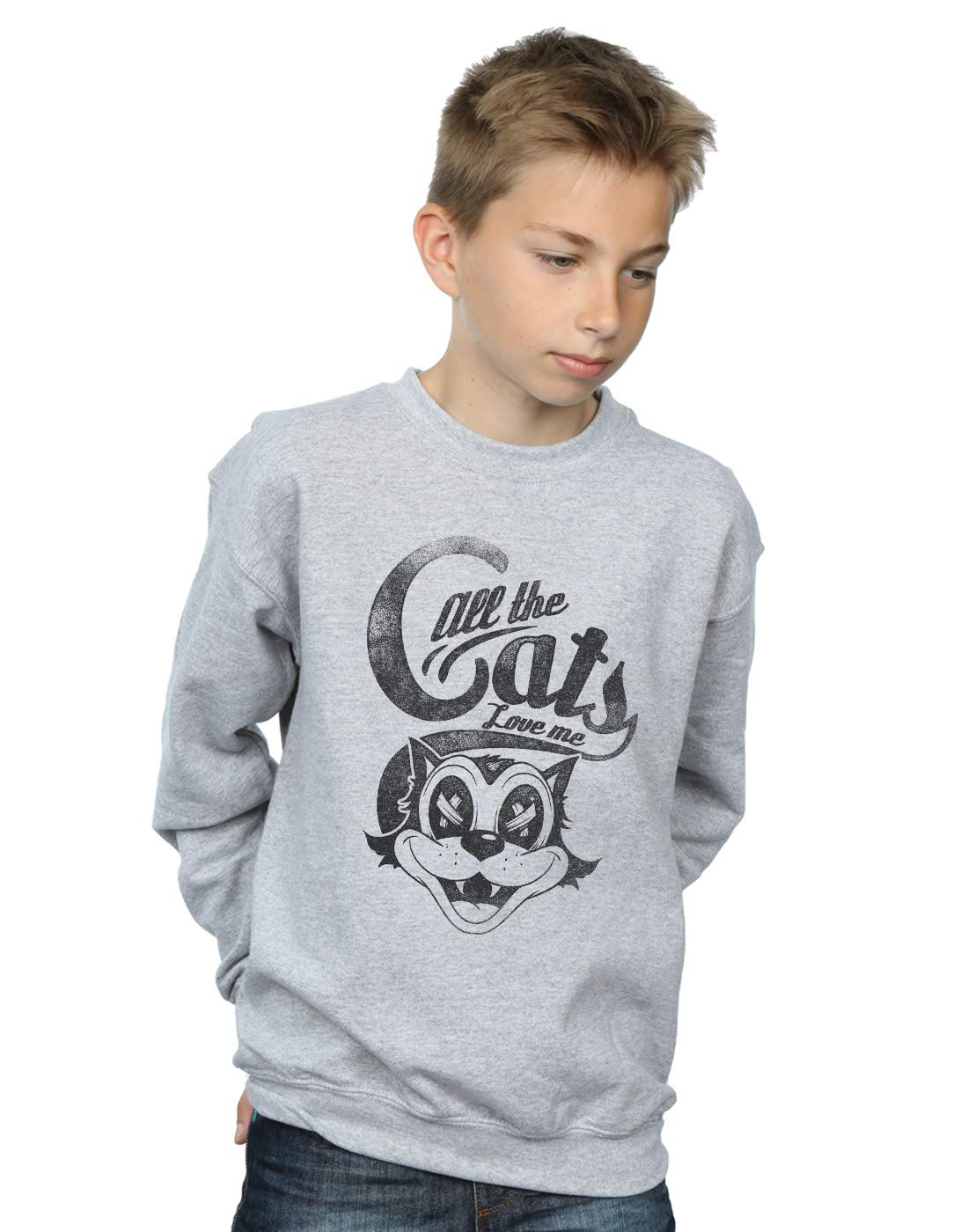 Drewbacca Boys All The Cats Love Me Sweatshirt Sport Grey 7-8 Years