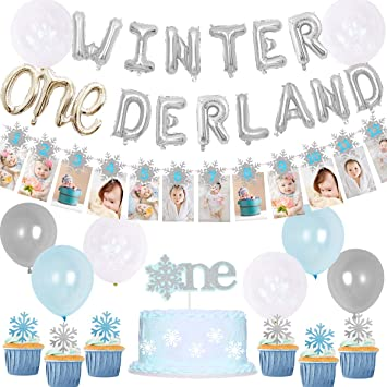 Sursurprise Winter Onederland Birthday Decorations for Winter 9st Birthday  Party Onederland Balloons Snowflake Photo Banner For Winter First Birthday