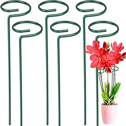 Hydrangea Flower Plant Support Stakes Semi Circular Metal Frame Professional For Garden Bow Plant Supports For Peonies Reuvv 2 Pcs Garden Border Plant Support