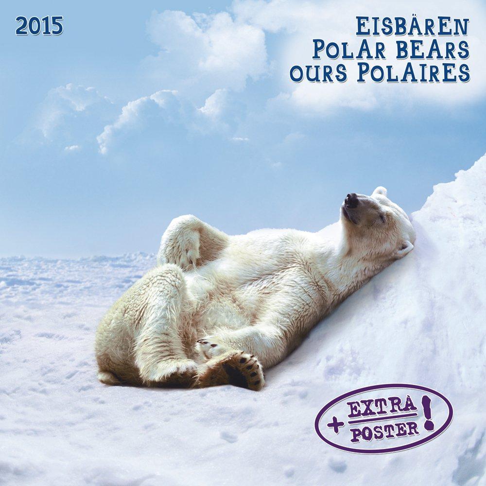 Polar Bears 2015