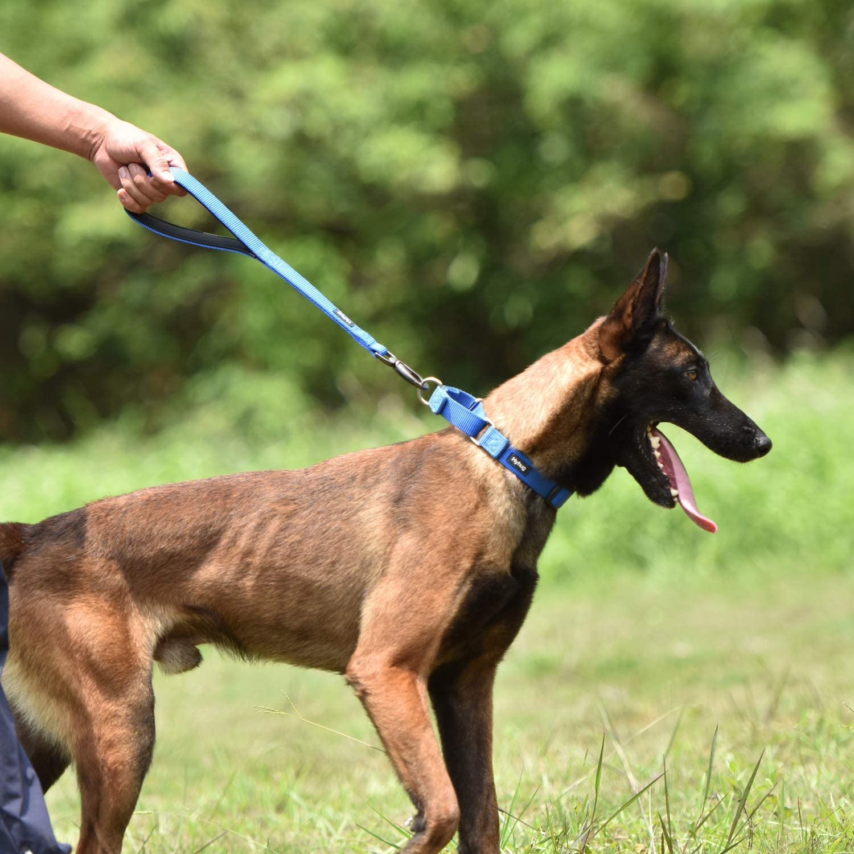 Blu Classico Hyhug Premium aggiornato guinzaglio Corto in Nylon Resistente di 45,7 cm di Lunghezza con Comoda Maniglia Imbottita e Robusta Clip per Cani di Taglia Media per Cani.