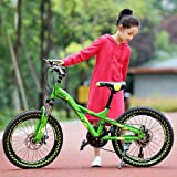 Kids' Bikes Outdoor Bicycle For Children 18/20 Inch Boy Girl Bicycle Student Outdoor Bicycle Boy And Girl Travel Mountain Bike (Color : Green, Size : 20inch)