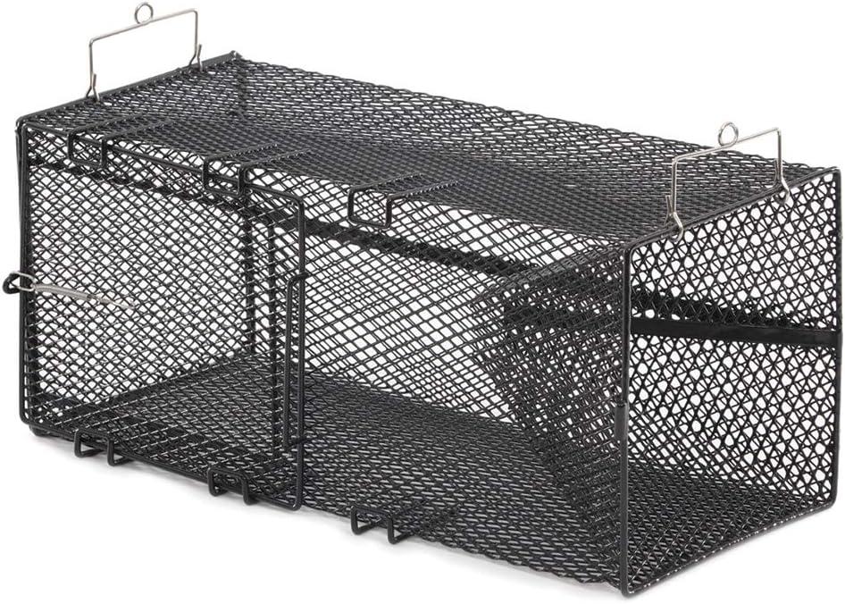 1264 Pinfish Trap