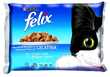 Felix Alimento Para Gatos Pescado 4 Sobres 400 Gr: Amazon.es: Productos para mascotas
