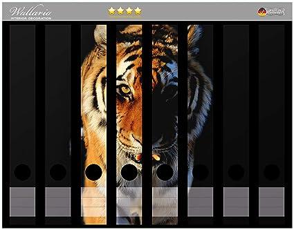 Lomo de archivadores Pegatinas laufender Tiger en Premium Calidad - Tamaño 8 x 3,5 x 30 cm, apta para 8 archivador estrecho (espalda: Amazon.es: Hogar