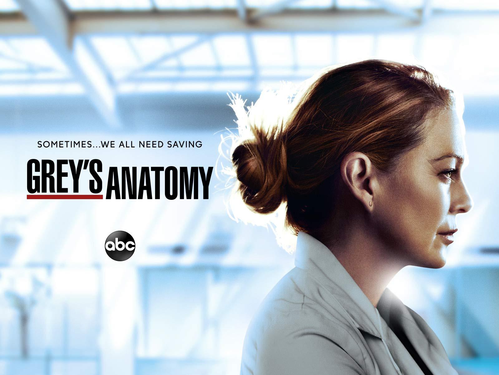 Watch Grey's Anatomy Season 17 | Prime Video
