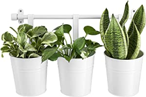 Dahey 3 PCS Hanging Flower Pots with Wall Rack Metal Iron Hanging Wall Planters Indoor Outdoor Tin Flower Holders Bucket with Detachable Hooks for Garden Home Office Decor,White,5 Inches