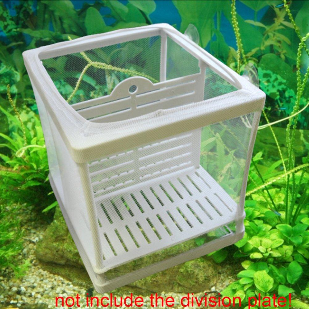 GEZICHTA Red de Aislante de plástico para peceras (Incluye ventosas): Amazon.es: Productos para mascotas