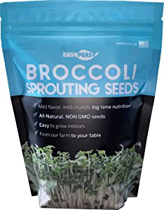 Broccoli Sprouting Seeds | Grown in USA | Non GMO | from Our Farm to Your Table (1 Pound)