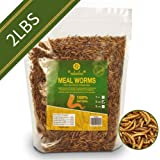 diig Non-GMO Dried Mealworms - Treats for Birds Chickens Hedgehog Hamster Fish Reptile Turtles, 2 lb