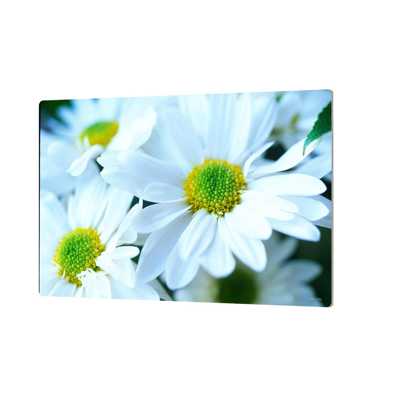24 by 36-Inch ArtWall Dan Wilsons Spring Flowers Artmetalz Aluminum Print Artwork